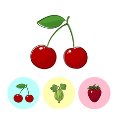 Fruit icons cherry gooseberry  strawberry vector