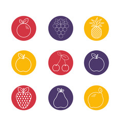Organic fruits backgroud icon vector