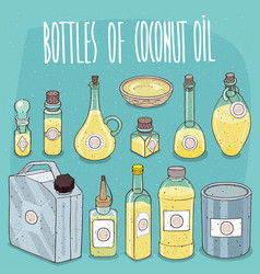 Set of containers with coconut oil vector
