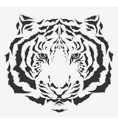 Tiger tiger vector