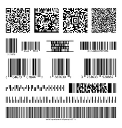 Business barcodes and QR codes set vector image