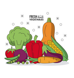 colorful poster with fresh vegetables vector image vector image