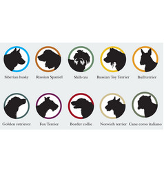 set of portraits silhouettes of dog breeds vector image vector image
