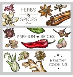 Spice And Herb Banner Set vector image vector image