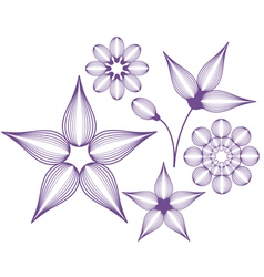 Unusual flowers vector image vector image