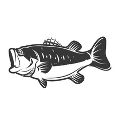 Bass fish icons isolated on white background vector