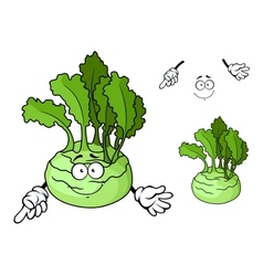 Cartoon smiling ripe kohlrabi vegetable cartoon vector