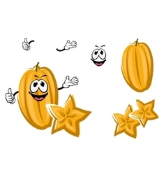Cartoon yellow carambola or starfruit vector