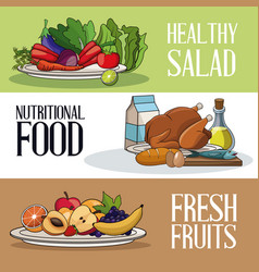 Brochure food healthy nutrition fresh vector