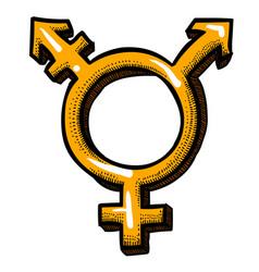 Cartoon image of transgender icon gender symbol vector