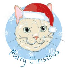 christmas card cute kitten in the red santa s cap vector image