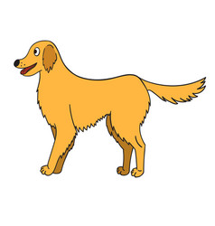 cute cartoon golden retriever isolated on white vector image