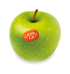 Green apple isolated on white vector image