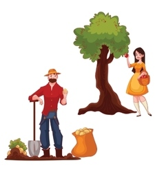 Man harvesting potato and woman picking apples vector
