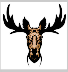 Moose head - isolated on white vector