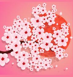 realistic sakura japan cherry branch vector image