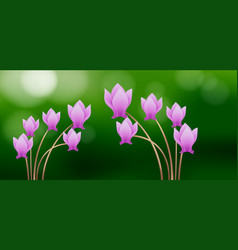 Pink cyclamen flowers on green background vector