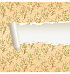 Torn paper ornament band vector