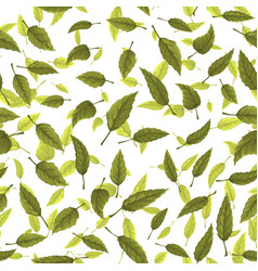 Seamless texture of green leaves vector