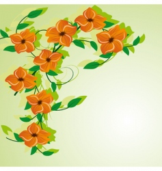 abstract background with orange flowers vector image vector image