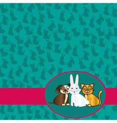 domestic pets label background of silhouettes vector image