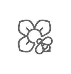 flower and bee line icon combination vector image