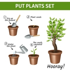 Putting Plants Icons Set vector image vector image