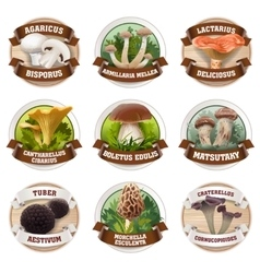 set of mushroom logos stickers vector image vector image