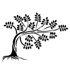 Tree silhouette isolated vector