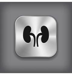 Kidneys icon - metal app button vector