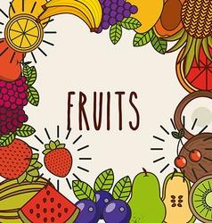 delicious fruit design vector image vector image