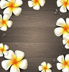 Tropical flowers on a wooden background vector image vector image