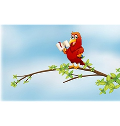 A parrot reading above a branch of a tree vector