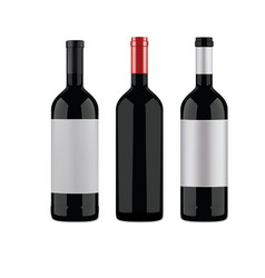 Wine bottles on a white background vector