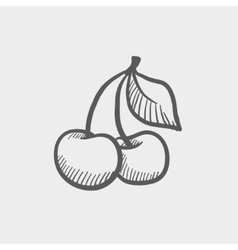Cherry sketch icon vector