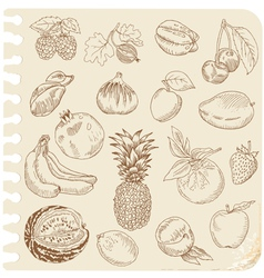 Set of doodle fruits vector