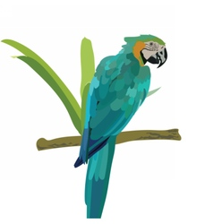 Colorful parrots and tropical palm leaves vector