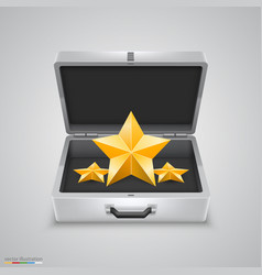 outdoor metal briefcase star vector image