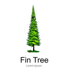 Cartoon isolated fin summer tree on a white vector