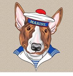 Sailor dog bullterrier breed vector