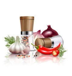 Spices vegetables composition vector
