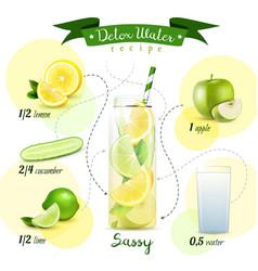 detox water recipe composition vector image