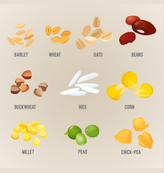 Cereals piles of types colorful flat poster vector