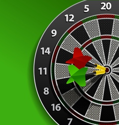 Two darts in aim vector image vector image