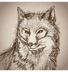 Fox portrait forest hand drawing vintage vector