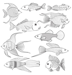 Set of contour black silhouettes of fish vector