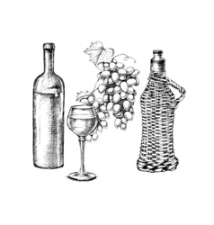 Set of grapes wine with hand-drawing style vector image vector image