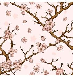 Cherry or sakura seamless pattern background vector