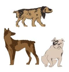 Breeds of dogs set sketch vector image