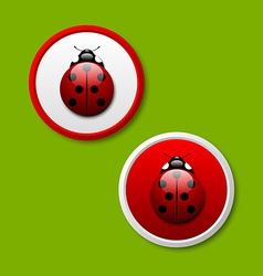 Ladybug icons vector image